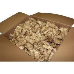 Allume Feu en laine de bois. Carton de 2,5 kg et d'environ 150 pièces